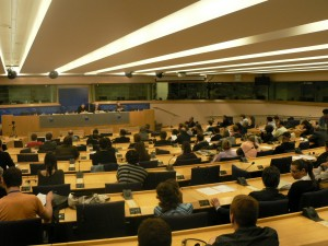 ParlamentoEuropeoDanielEstulin1junio201003-300x225