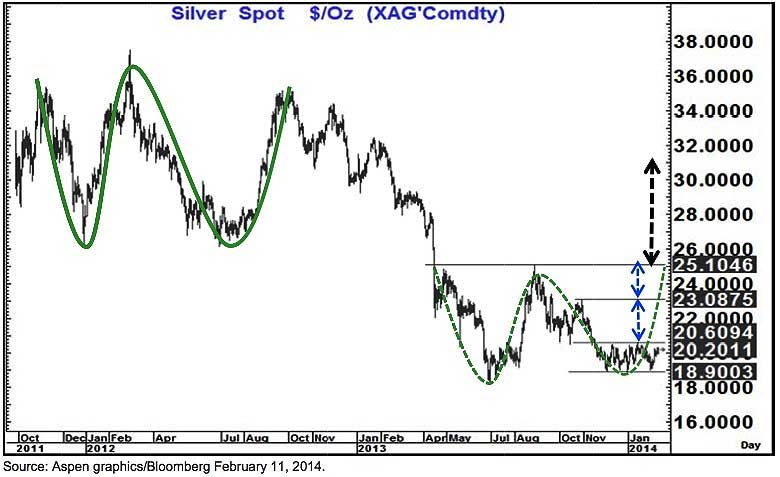 silver-fitzwilson-11022014